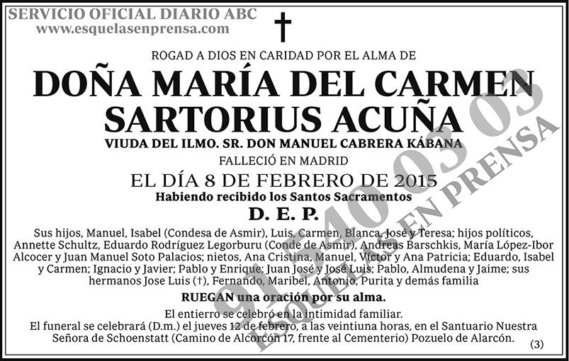 María del Carmen Sartorius Acuña